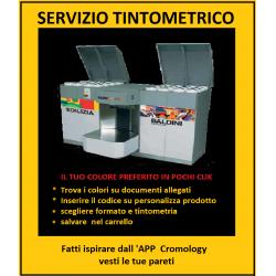 sevizio tintometrico